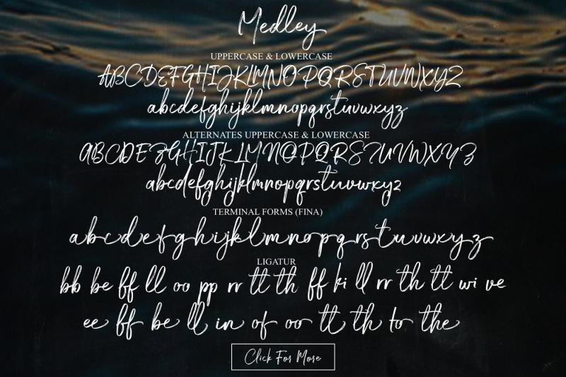 medley-brush-script