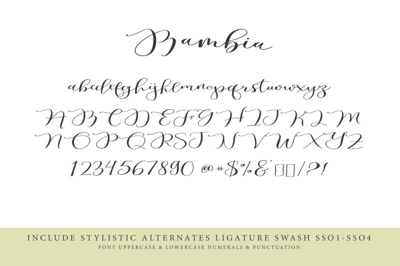 bambia-calligraphy