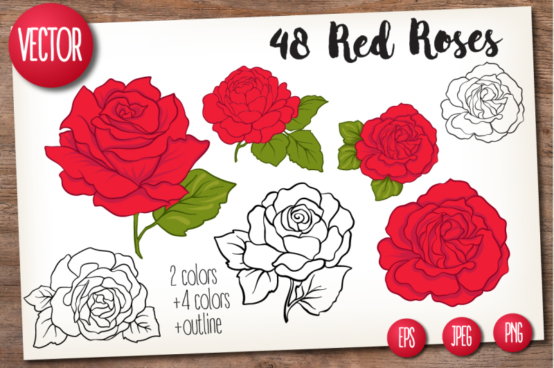48-red-roses-set