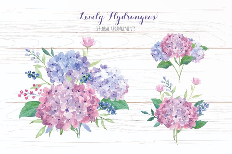 lovely-hydrangeas