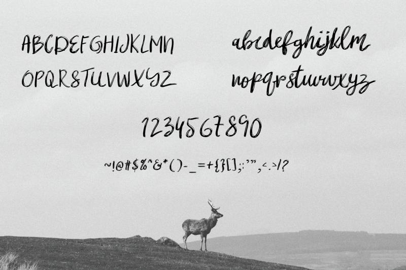 mibrush-brush-font