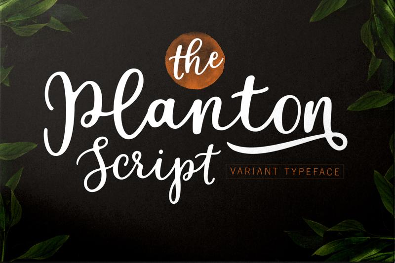 planton-script