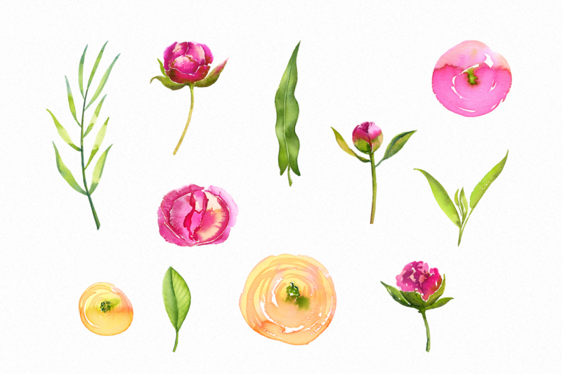 watercolor-bright-peonies-and-twigs
