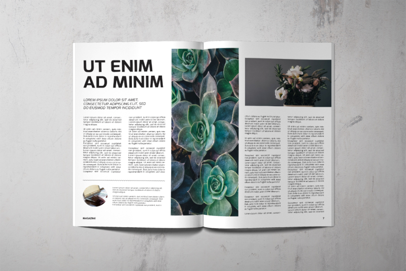 magazine-template-44-pages