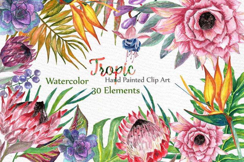 watercolor-tropic-clipart