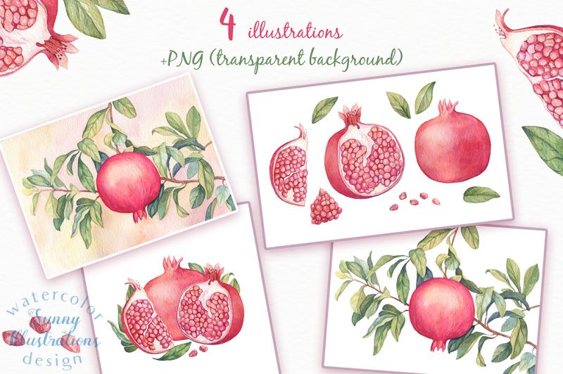 watercolor-pomegranates