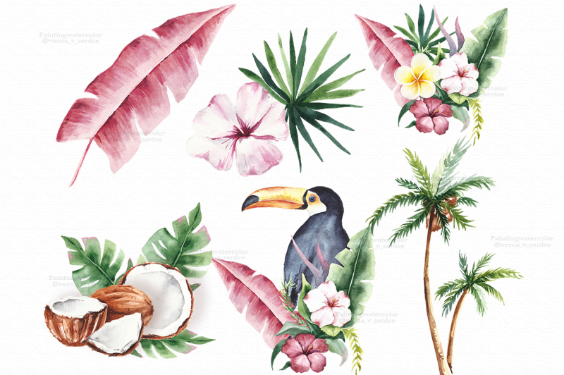watercolor-tropical-clipart-summer