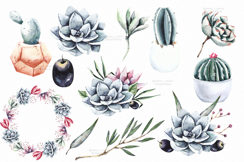 succulents-and-cactus-watercolor-clipart