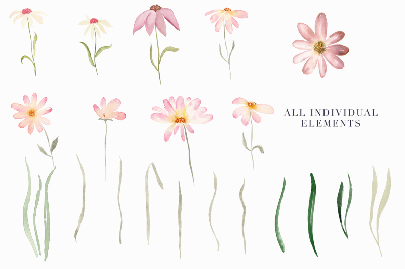 daisy-belle-watercolor-floral-clipart