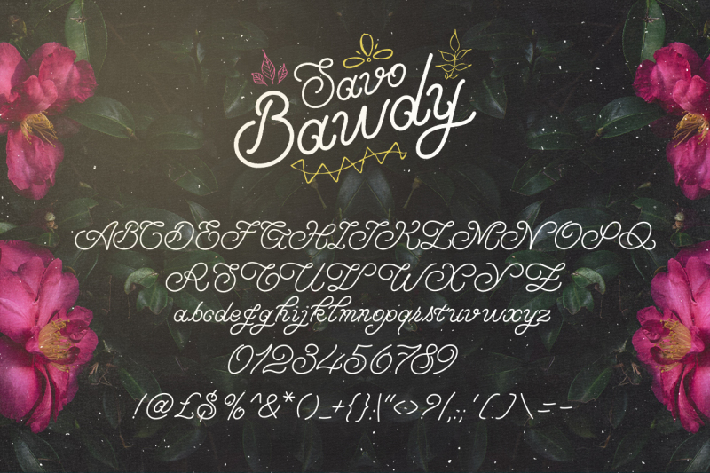 savo-bawdy-typeface