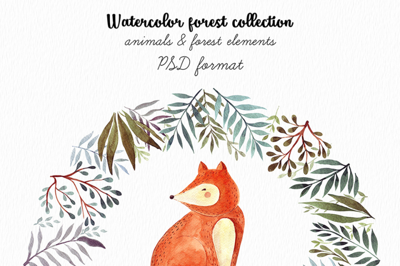 watercolor-forest-collection