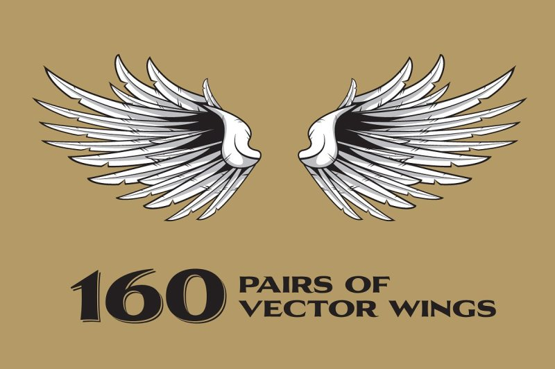 160-pairs-of-vector-wings