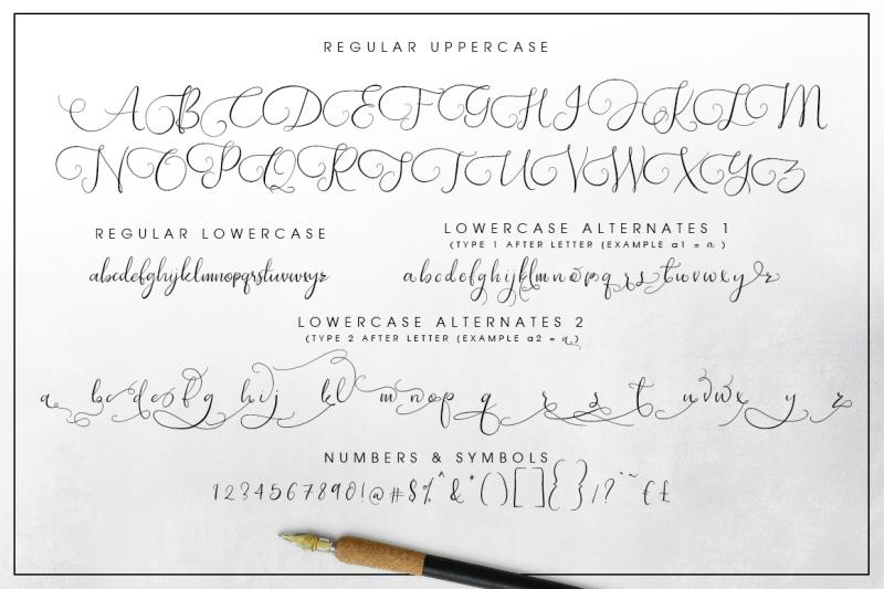 southfall-script-font