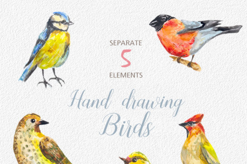 digital-watercolor-birds-clip-art