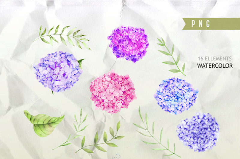 floral-watercolor-photoshop-clipart-spring-blog-design-resource