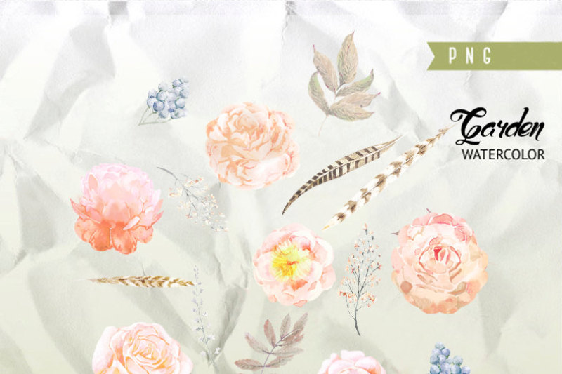 wedding-watercolor-clipart-peach-peonies-roses-flowers-feathers-hand-painted-clip-art-floral-invitations-greeting-card-diy-elements