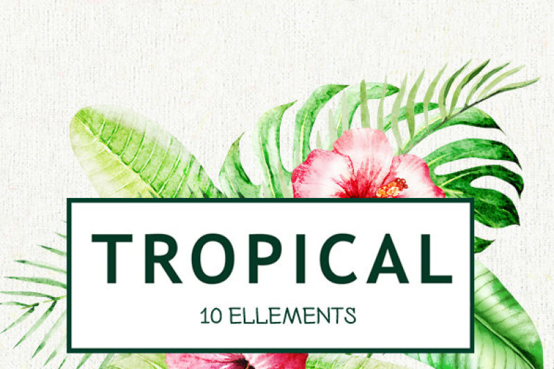 watercolor-tropical-bright-leaves-handpainted-clipart-foliage-green-leaf-tropic-wedding-invitation-separate-elements-greeting-diy