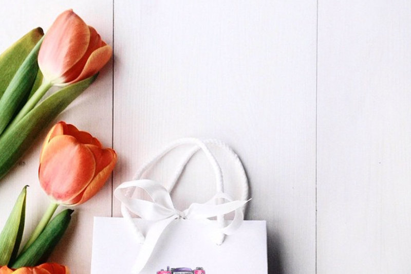 premade-logo-package-photography-logo-camera-logo-boho-pink-logo-branding-package