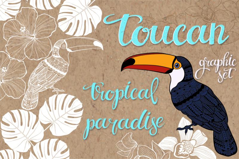 toucan-tropical-paradise