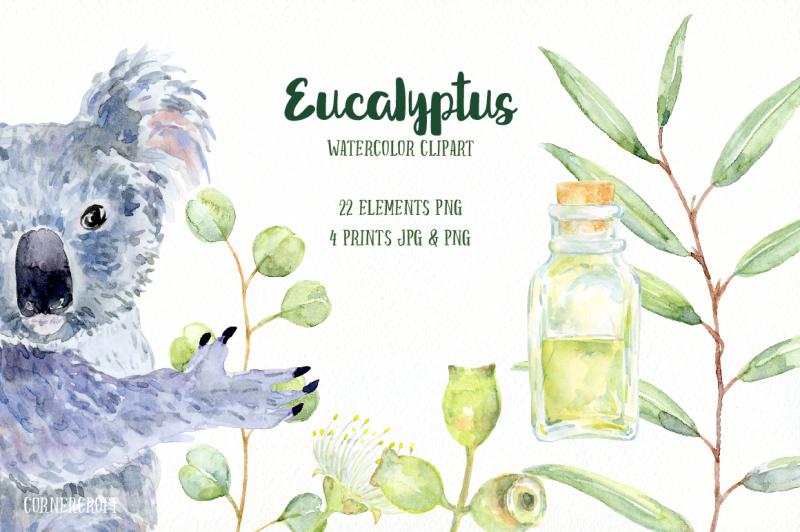 watercolor-clip-art-eucalyptus