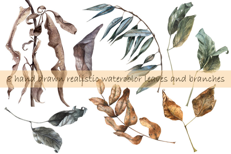 realistic-hand-drawn-watercolor-autumn-leaves-set