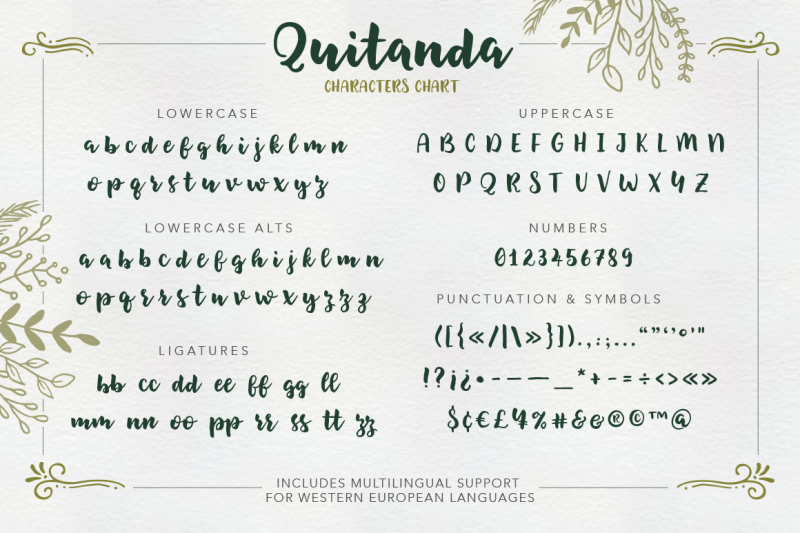 quitanda-brush-script-font-and-extras