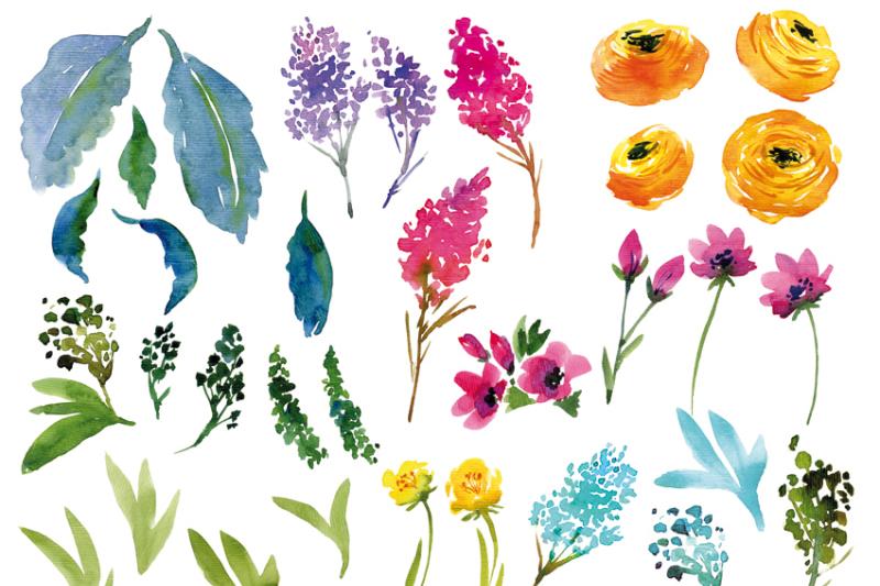 watercolor-flowers-ranunculus