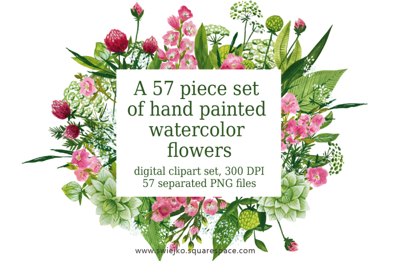 watercolor-and-gouache-meadow-flowers