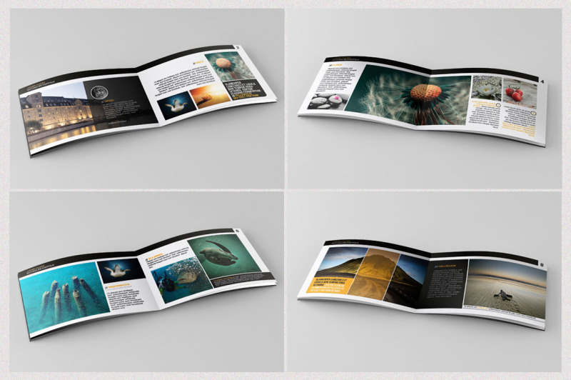 naturelife-portfolio-brochure