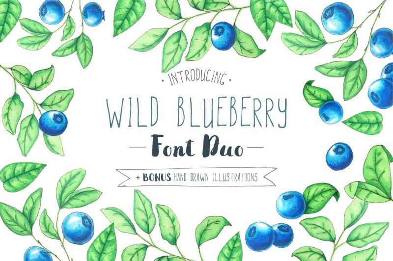wild-blueberry-font-duo