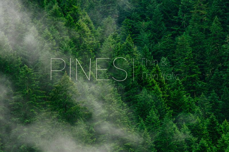 pines-thin-and-pines-thin-italic