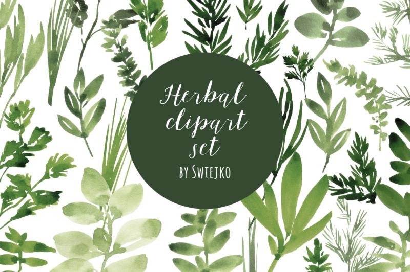watercolor-herbs-set
