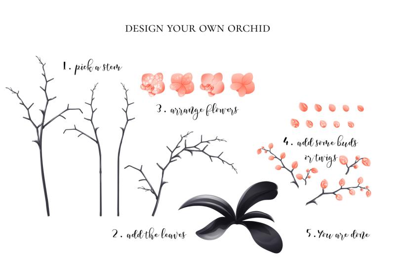 orchid-clipart-design