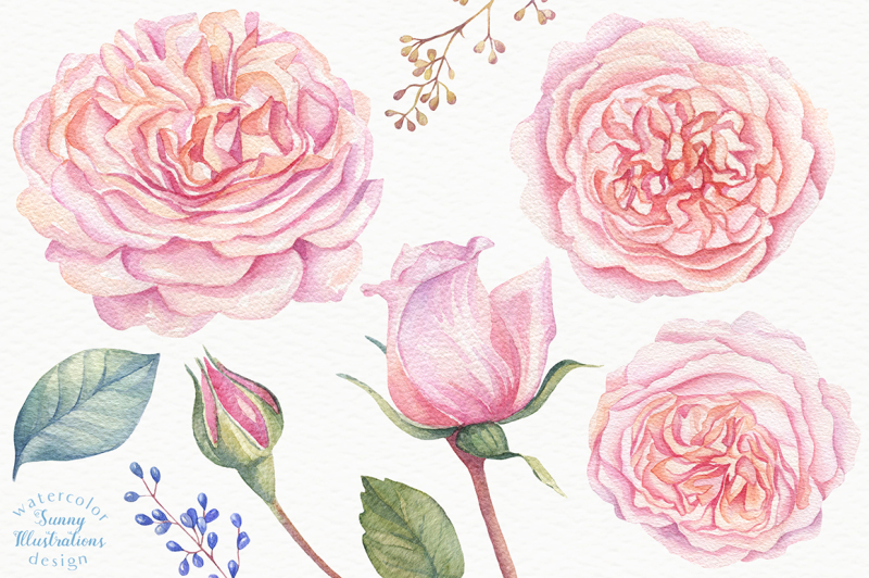 watercolor-rose-garden