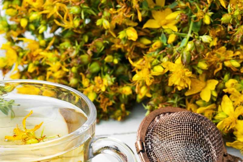 herbal-hypericum-tea