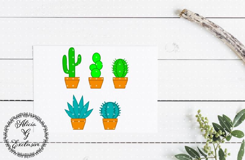 cactus-set