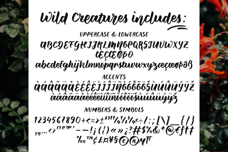 wild-creatures-a-brush-font