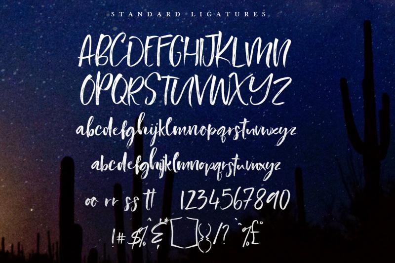 southerner-script-font