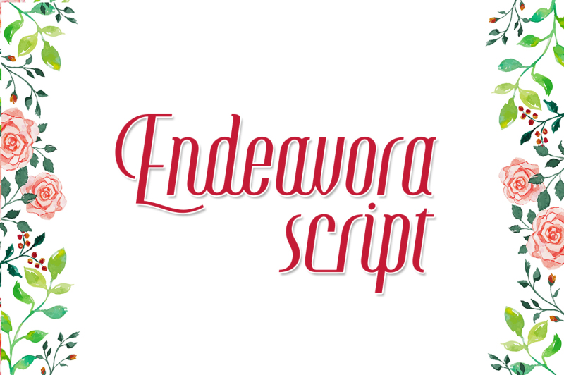 endeavora-script