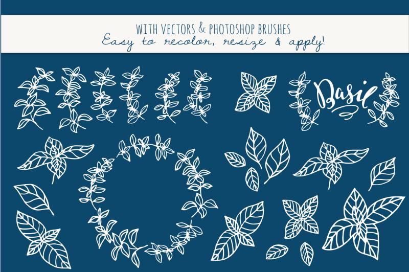summer-basil-clipart-and-vectors