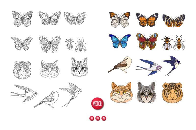 cats-butterflies-birds-set