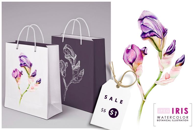 iris-watercolor-botanical