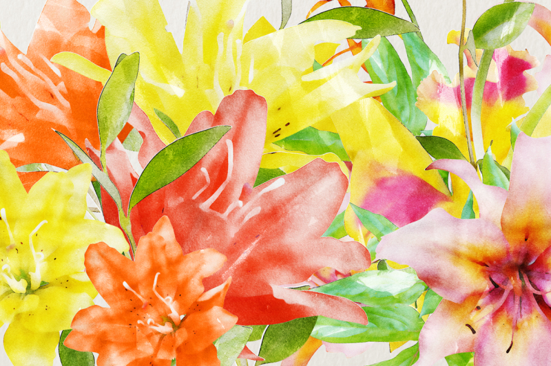 watercolor-lilies-and-orchids