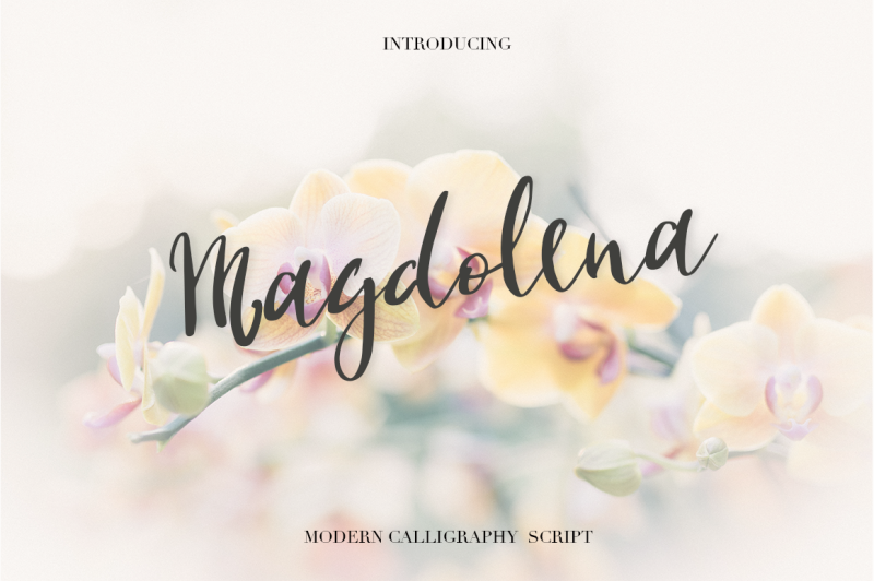 magdolena-script