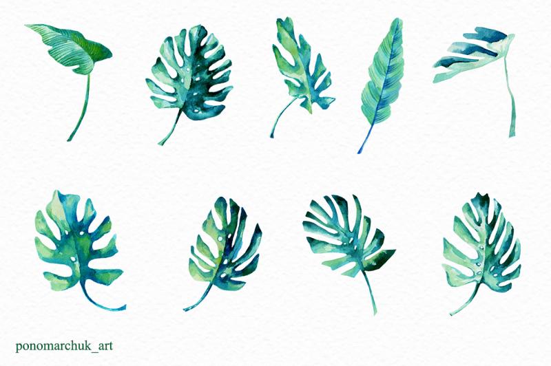 tropical-leaves-set