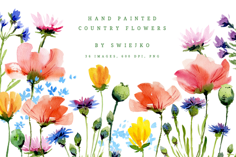 watercolor-country-flowers