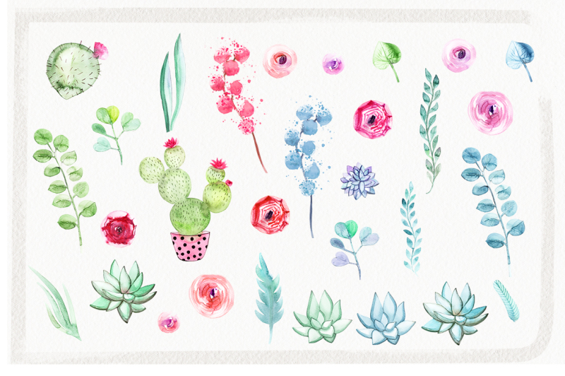watercolor-flowers-and-succulents