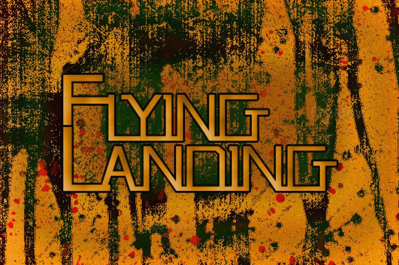 flying-landing
