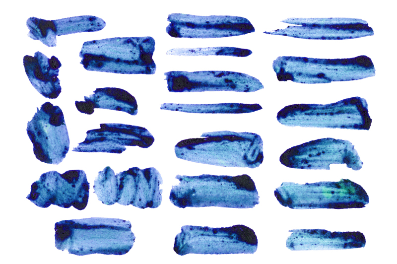 22-watercolor-blueberry-brushes