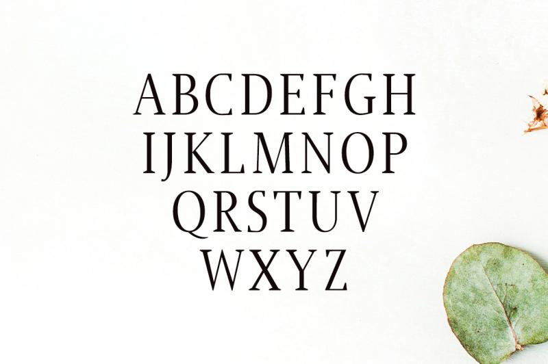 jerrick-serif-6-font-pack-50-percent-off